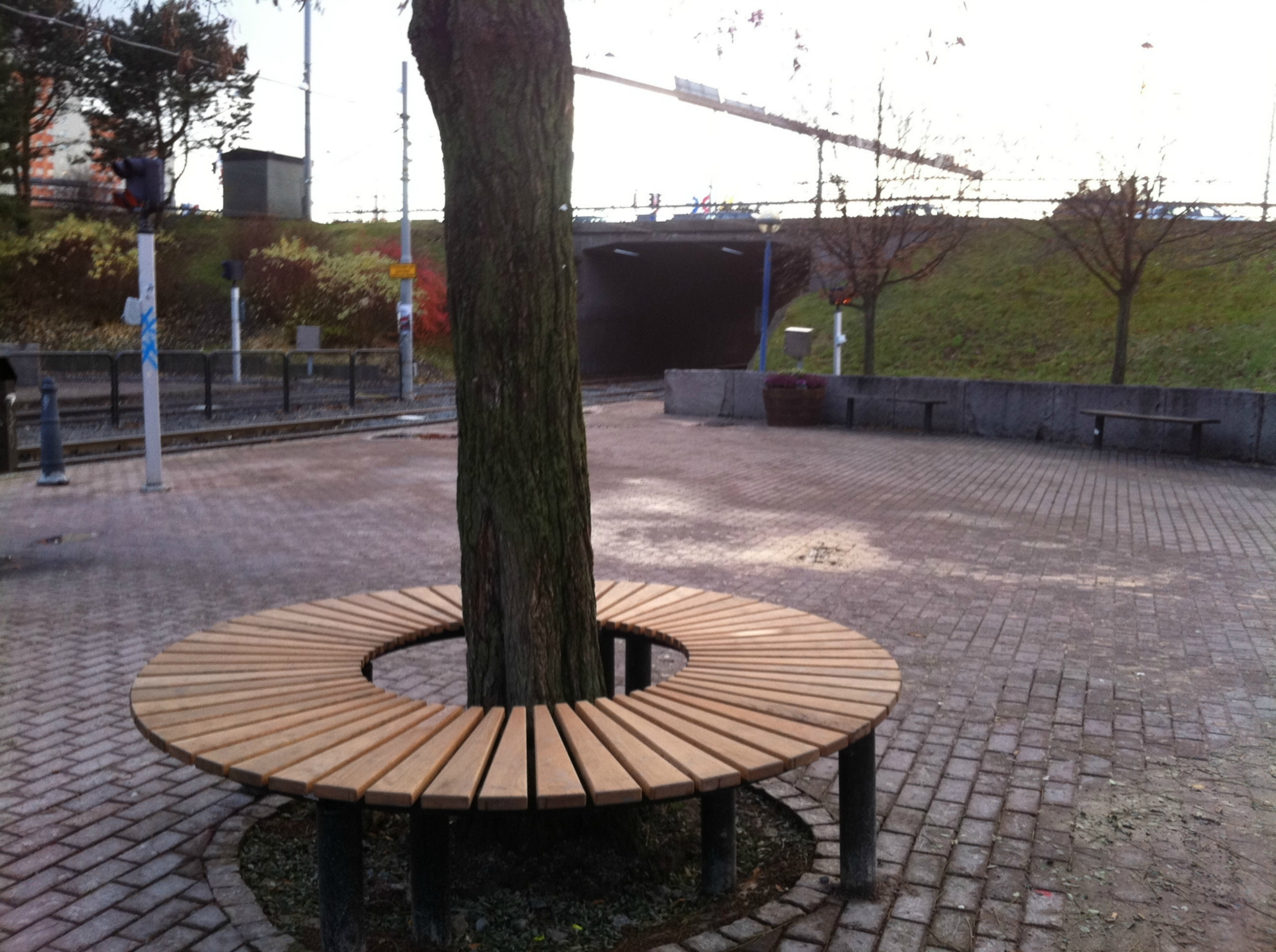 Buztic com ritning bänk runt träd ~ Design Inspiration für die neueste Wohnkultur